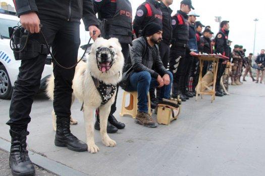 İstanbul Emniyeti Yılbaşı Hazırlıkları Tamam