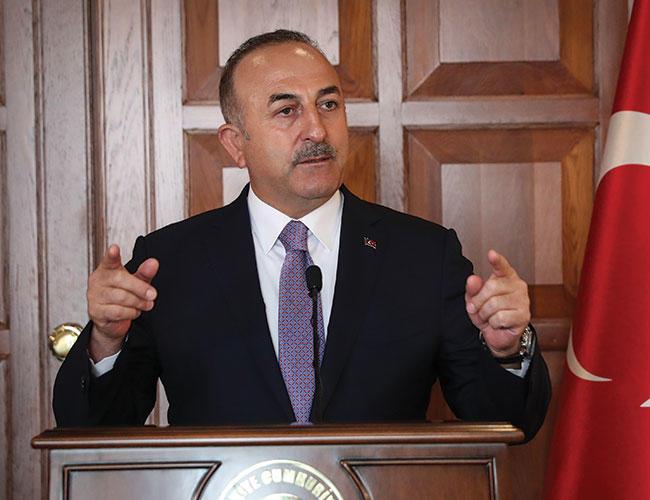 Türkiye, Almanya'nın Afrin operasyonu konusundaki sözlerini eleştirdi