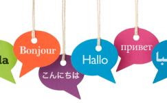 Dil Eğitimi Yerinde Alınır