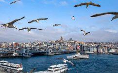 Ağaçlar erken çiçek açarken, uzmanlar Türkiye'deki iklim değişikliği konusunda uyardı
