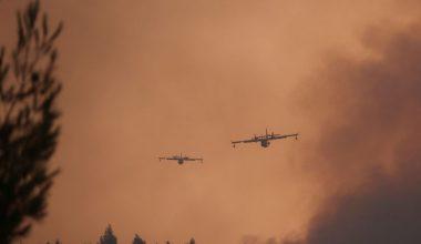 AB bilim adamları, Akdeniz'in 'orman yangını sıcak noktası' haline geldiğini söylüyor