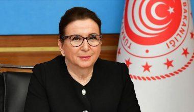 Türkiye, Ar-Ge konusunda uzmanlaşmış yeni serbest ticaret bölgesi başlattı