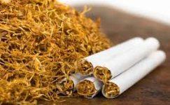 Adıyaman Tütünü